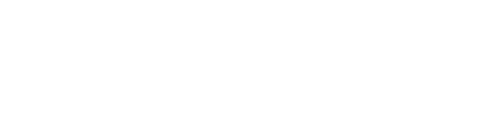 Connecticut Airport Authority logo